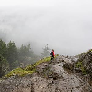 5 Reasons to Visit Goldstream Provincial Park