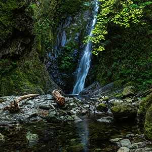 Let's camp! A guide to spending the weekend at Goldstream Provincial Park